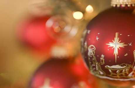 pamigo-christmass